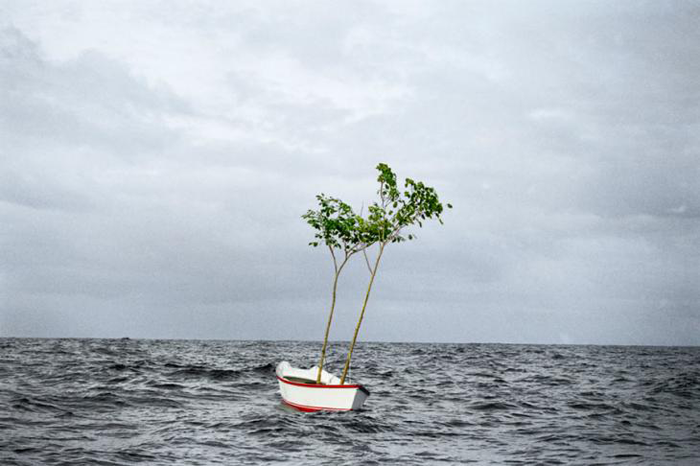 Fotografía por el artista brasileño Thiago Rocha Pitta.