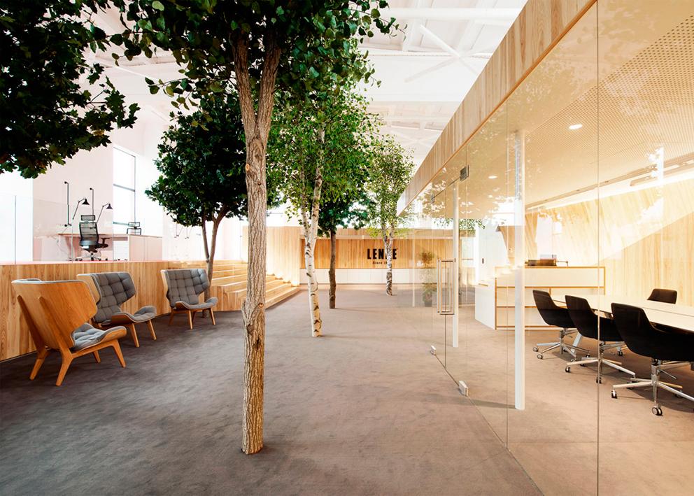Los árboles están en medio de las oficinas de la firma de ropa para niños Lenne.