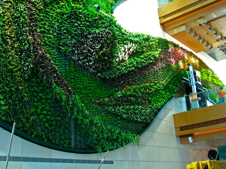 Por un mundo m s verde for Jardines verticales panama