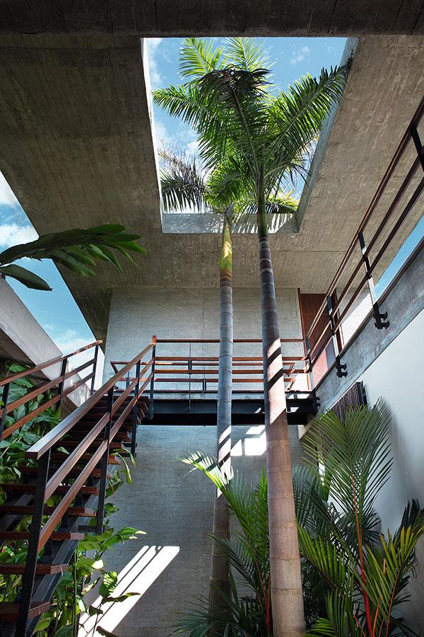 racionalismo-tropical-arquitectura-de-concreto-y-madera